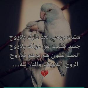 2123529_1605816986.jpg