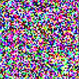 2299810_1607999319.jpg