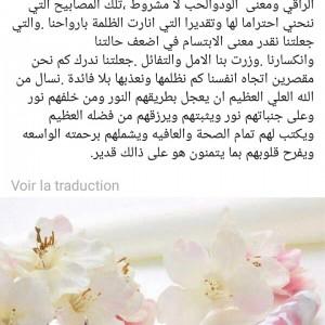 311599_1559122941.jpg