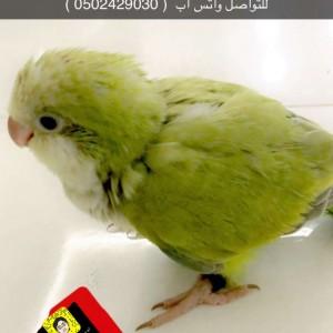 330600_1557797207.jpg