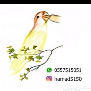 330600_1557856326.jpg