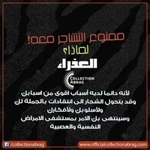 343811_1559160367.jpg