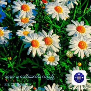 403697_1568358452.jpg