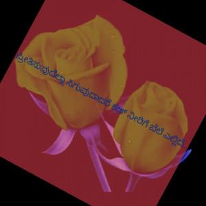 521685_1585306002.jpg