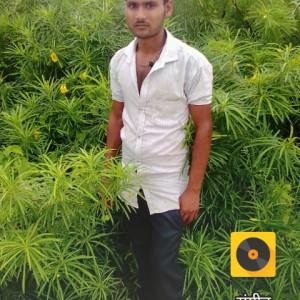 704937_1568529494.jpg