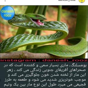 759032_1573643116.jpg