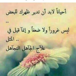 845458_1573508810.jpg