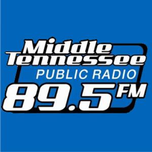 WMOT Jazz 89.5 FM