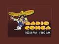 Radio Conga - 103.9 FM