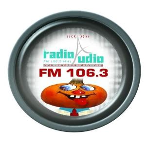 Radio Audio- 106.3 FM