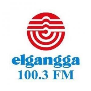 PM3BFZ - ELGANGGA 100.3 FM