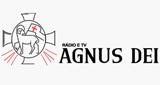 Rádio Angus del Rei