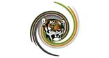 Tiger FM